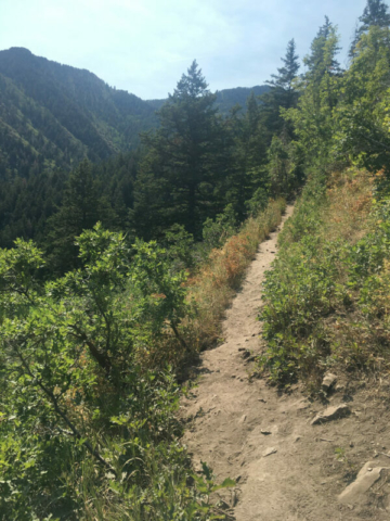 Taking Desolation Trail above Mill Creek Canyon