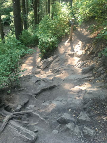 Climbing up rocks on Desolation Trail in Mill Creek Canyon