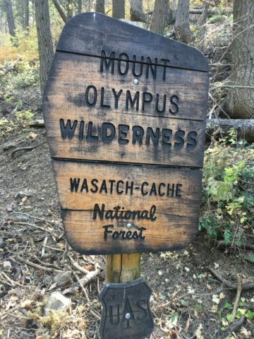 Hiking in the Mount Olympus area, although we were headed up Mt Raymond on this trek. Still in the Wasatch-Cache National Forest
