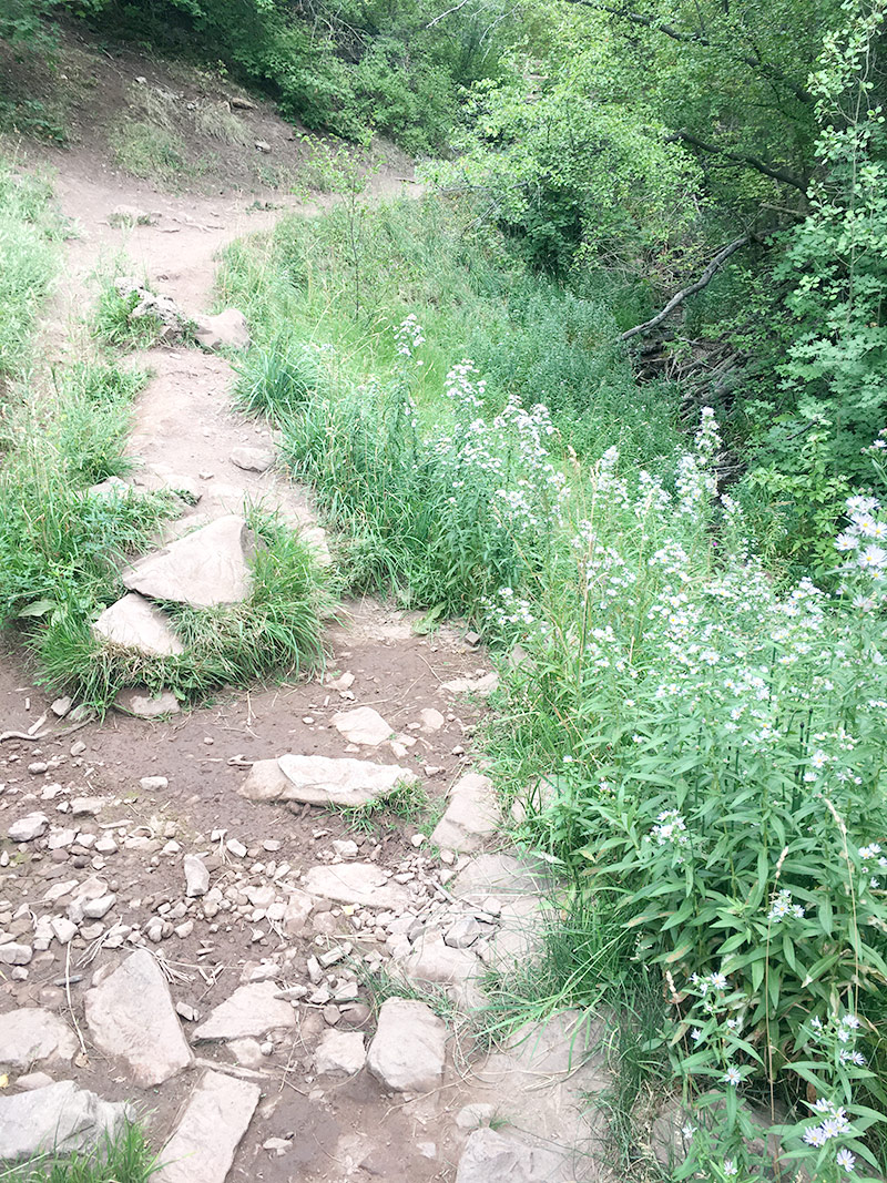 Glad to be back down the trail near the water as we approach the Church Fork Trail head, where we started!
